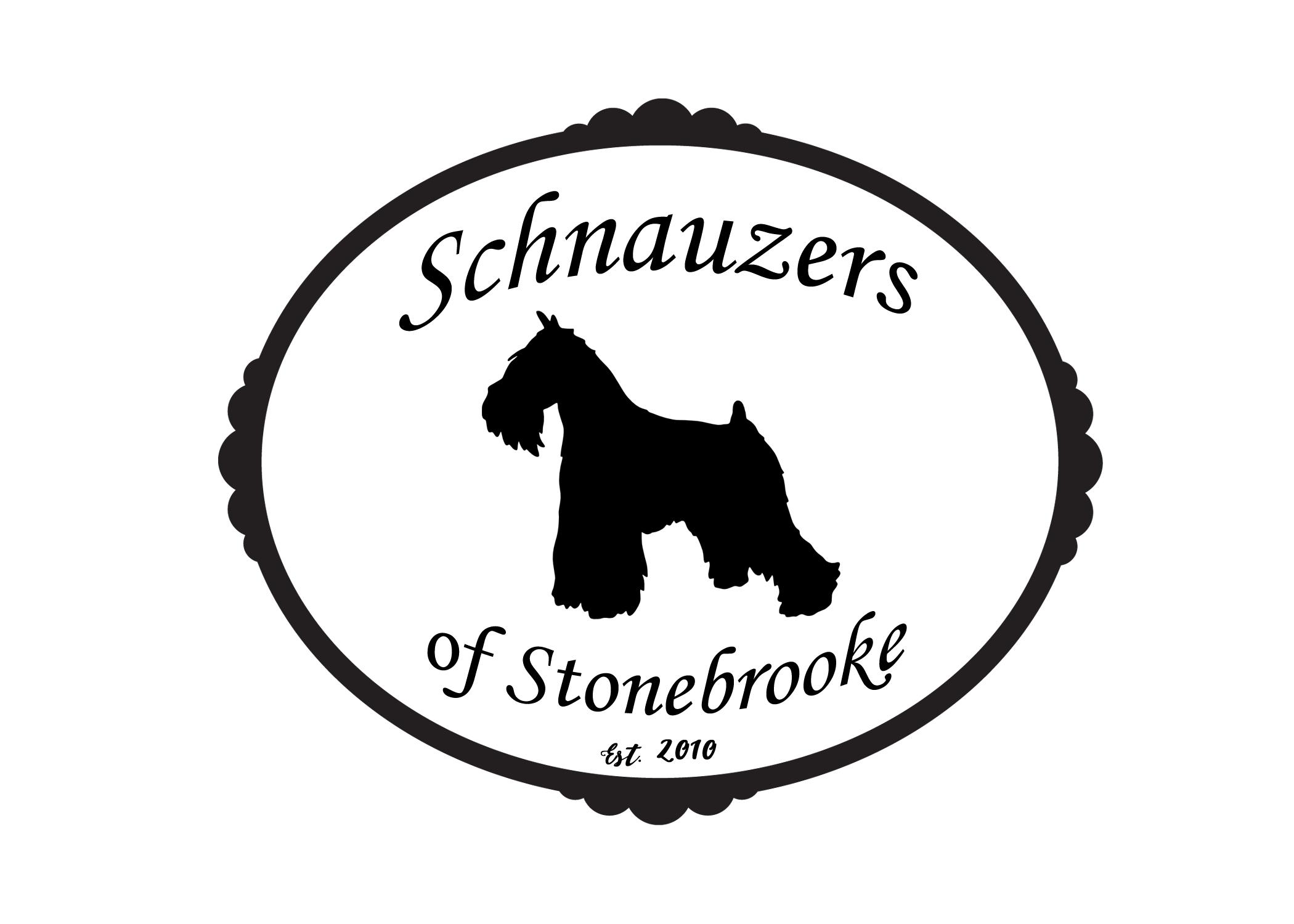 Miniature Schnauzer puppies SC - Miniature Schnauzer puppies